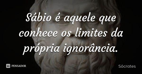 Sábio é aquele que conhece os limites da própria ignorância. — Sócrates