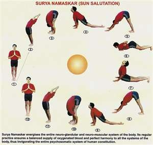 sun salutations  yoga poses basic yoga poses yoga poses