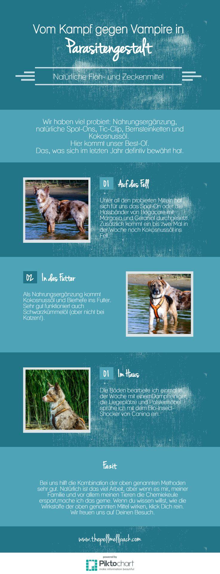 Natürliche Mittel gegen Zecken und Flöhe -- Wir haben Einiges getestet und Weniges für gut befunden. Unsere ultimativen Tipps findest Du hier. | Hund | Gesundheit | Pflege | Zeckenschutz | thepellmellpack.de