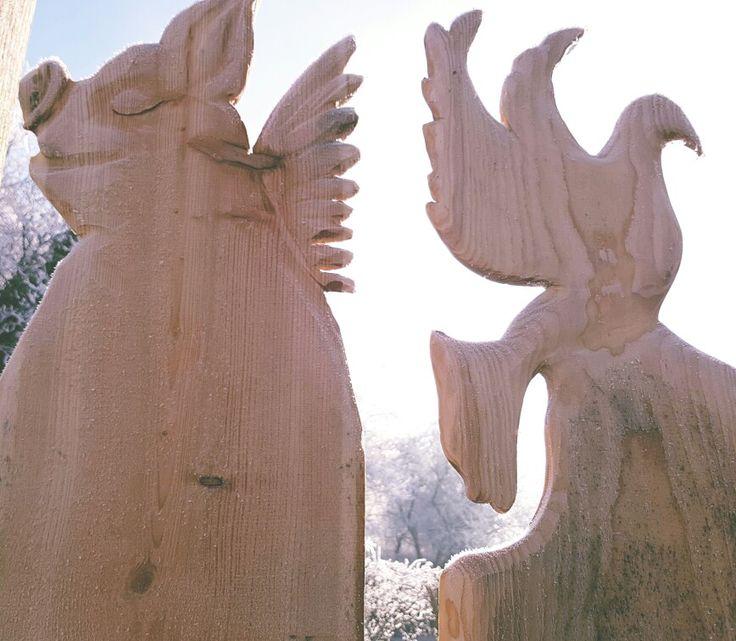 Holz Zaun fliegendes Schwein Taube