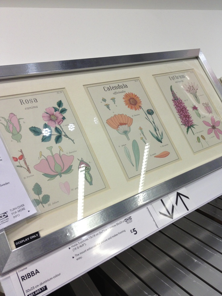 Ikea's interpretation of our Botanical Discovery trend for s/s 2014.