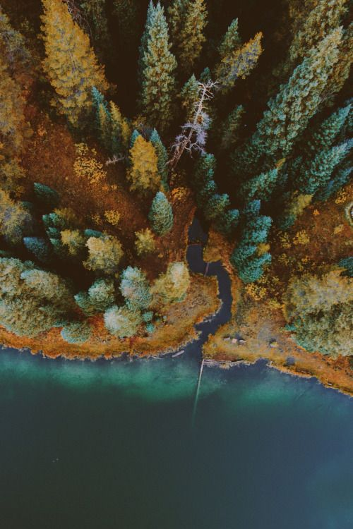 bright-glowing-embers: lsleofskye: Emerald Lake Lets...