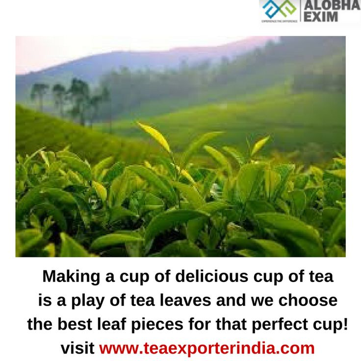 best tea leaves to give you that perfect tea cup! Visit www.teaexporterindia.com