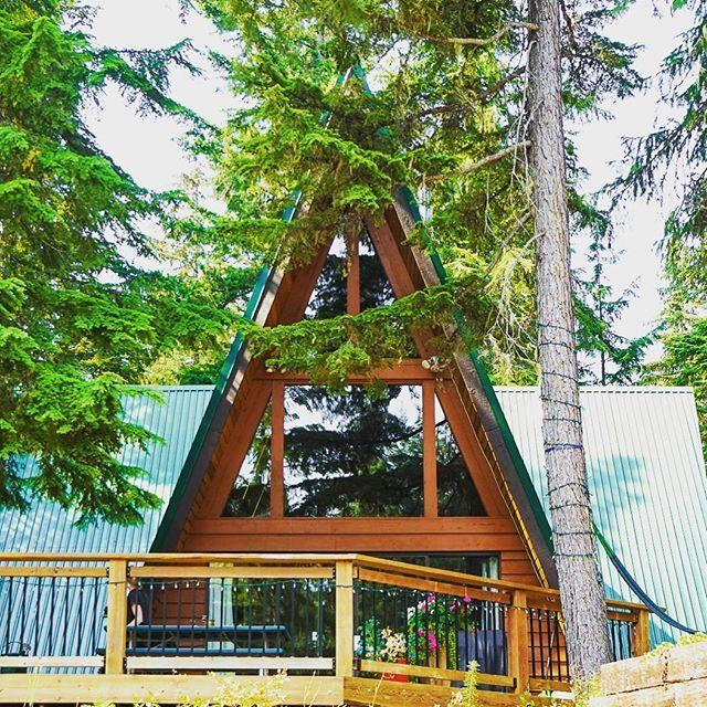 森の中に佇むa Frame エメラルド色の屋根も森に馴染んでしました An