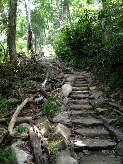 Chimney Tops Trail, Gatlinburg, Tennessee  4 mile trail . . . Was an amazing hike!!