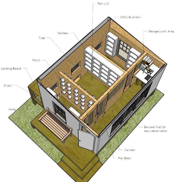 Image Result For Racing Pigeon Loft Design Plans Pigeon Loft