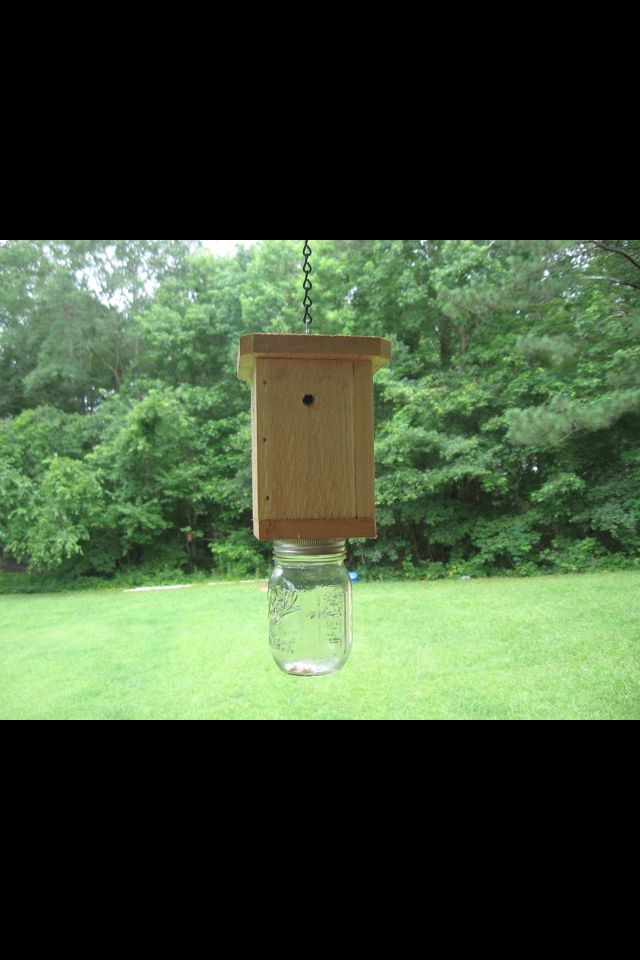 Bee catcher ! Made with a mason jar and wood . Really works .