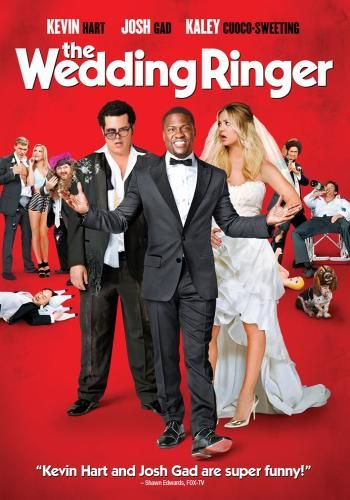 Have you seen it yet? 'Cause I think you should. It stars Kevin Hart and Josh Gad. Here's how Redbox describes it: Doug Harris is a lovable but socially awkward groom-to-be with a problem: he has no best man. With less than two weeks until he marries the girl of his dreams, Doug is referred to Jimmy Callahan, owner and CEO of Best Man, Inc., a company that provides flattering best men for socially challenged guys in need.