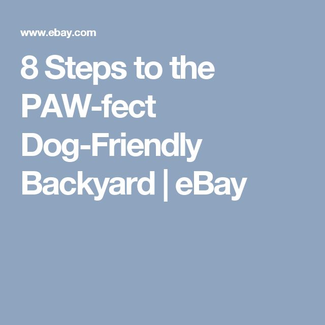 8 Backyard Ideas To Delight Your Dog: Best 25+ Dog Friendly Backyard Ideas On Pinterest