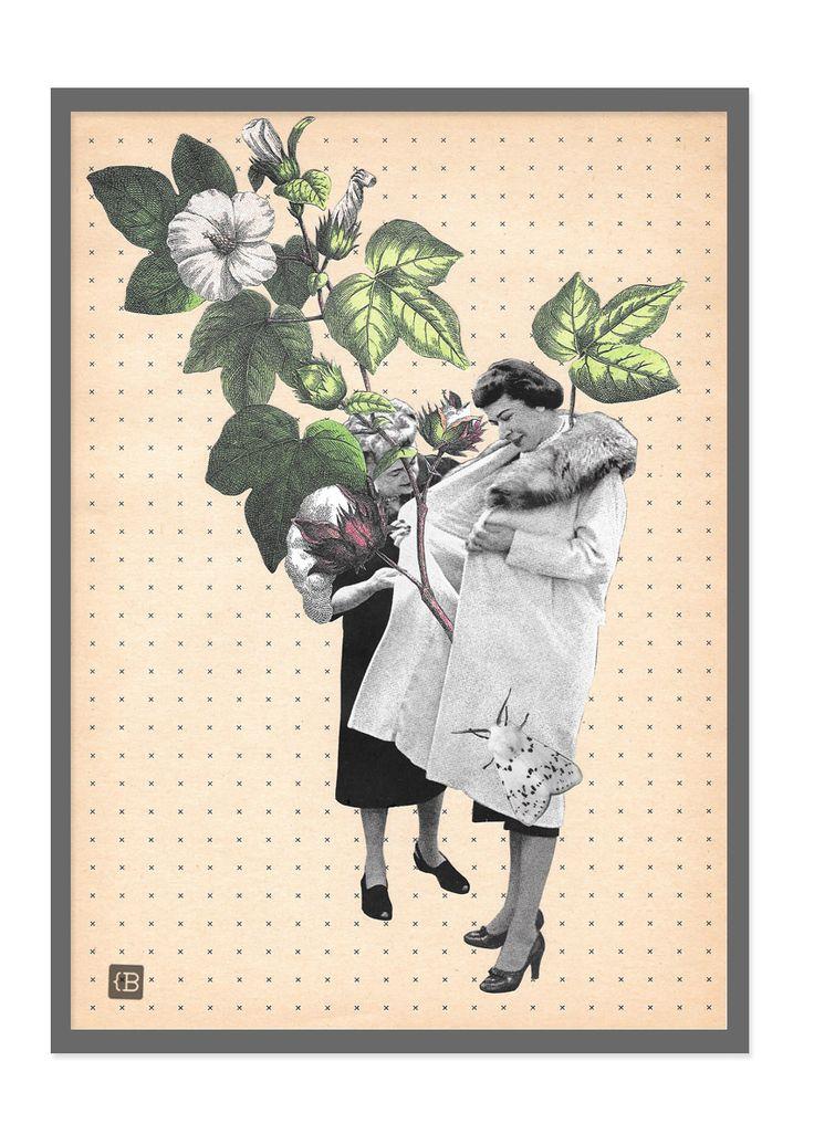 Cotton by Kinga Berkowska; collage papercuting