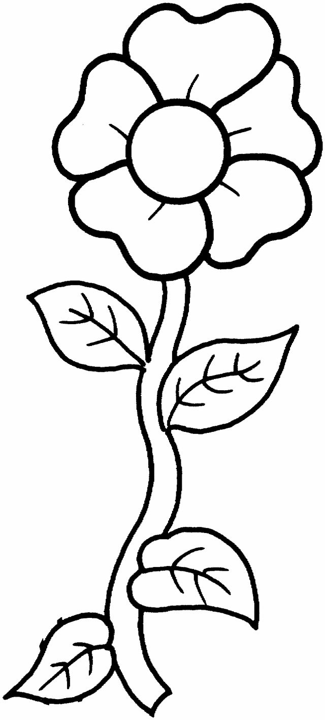 a single flower free printable coloring pages for when they want to make flowers - Drawings For Kids To Color