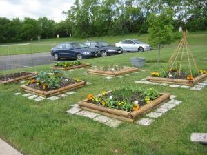 For starters: Garden Resource Links | Kansas Green Schools