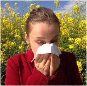 Najbolji prirodni lekovi za alergiju na polen trave