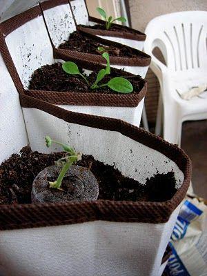 166 Best Images About Urban Garden Vertical On Pinterest