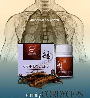 Az Eternity Cordyceps 100%-ban Cordyceps sinensist tartalmaz. Segíthet optimális szinten tartani a tüdőt és a légutakat, valamint növelheti a fizikai állóképességet, illetve elűzheti a fáradtságot.…