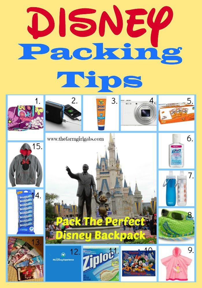 Ideas on what to pack in your park bag