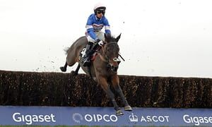 Harry Cobden suggests Cue Card 'definitely the most important experience of my career'