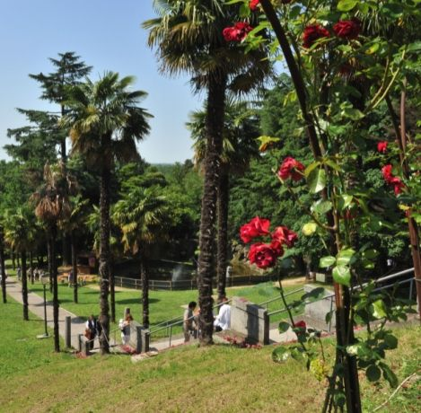 Parco Botanico Archeologico -Buttrio (Ud) The park is located in the Toppo-Florio Villa and it boasts about 60 native plants, but also some exotic species. It also preserves several Roman archaeological relics found by the Counts Toppo in Aquileia during some digs.
