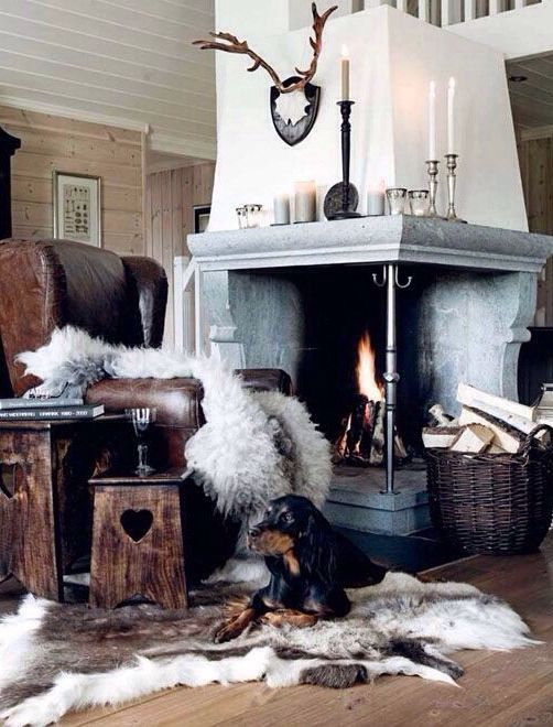 fire place fur rugs and wall antlers - Fireplace Rugs