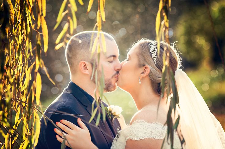 Kissing in the willows