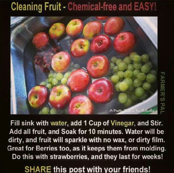 Great Idea to keep Fruit Fresh!!