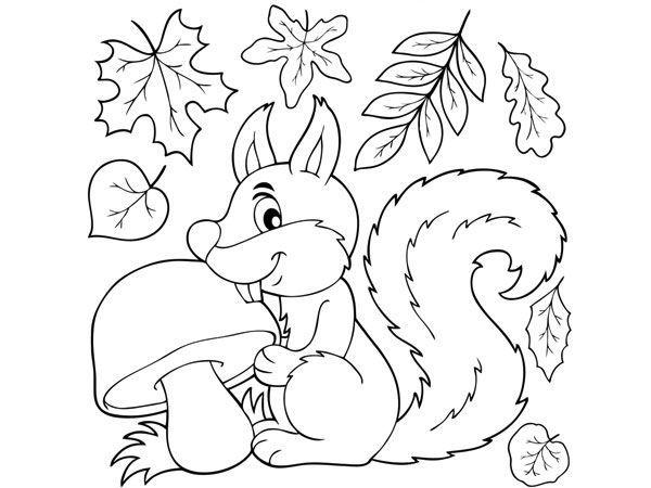 Coloriage à imprimer : l'écureuil   Coloriage automne, Coloriage