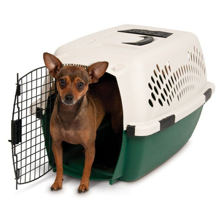ruff maxx plastic dog crate kennel