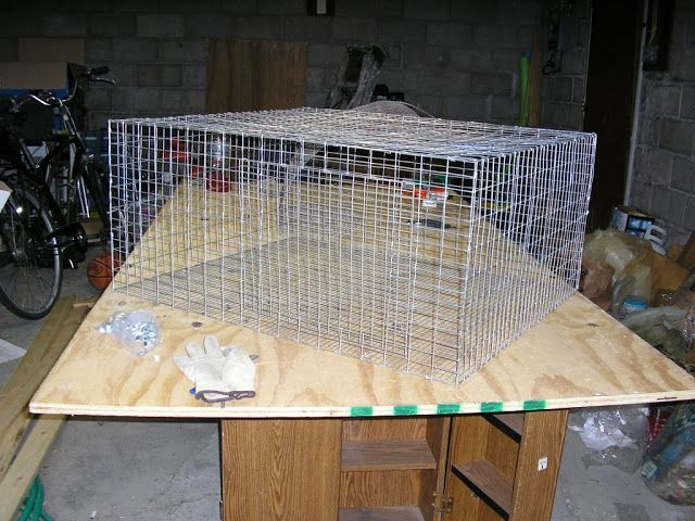 wire rabbit cage tutorial