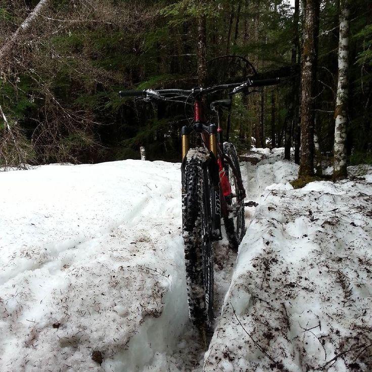 Not the best trail election today #enduro  #sqmtb  #mtb  #Squamish  #ijurkoracing  #sorca  #xc