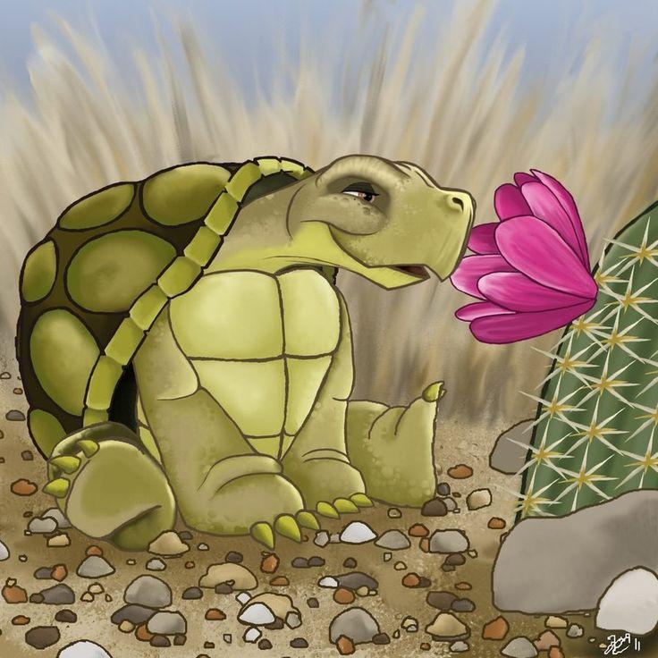 Nana's Tortoise by amydrewthat on DeviantArt