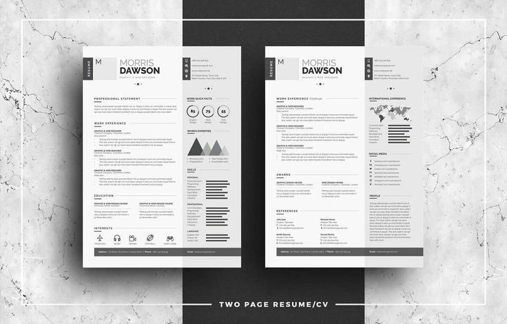 """Infographic Resume"" by WhiteGraphic is a modern CV design which trades colors for shades of gray. Using the two-column format, the right side keeps it simple with just contact deets, skills,  and creative social media bars. Modern resume icons round it off by subtly informing the beginning of each section."