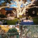 30 Ideas dulces para el patio trasero íntimas bodas al aire libre