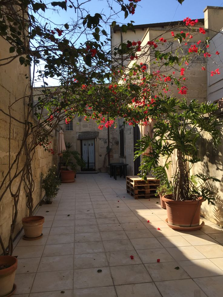 Cortile Bed and breakfast per le tue vacanze nel Salento. Splendida location per feste ed eventi. Via Paladini55, Lizzanello (LE) Puglia Italy info +39 327 688 0959