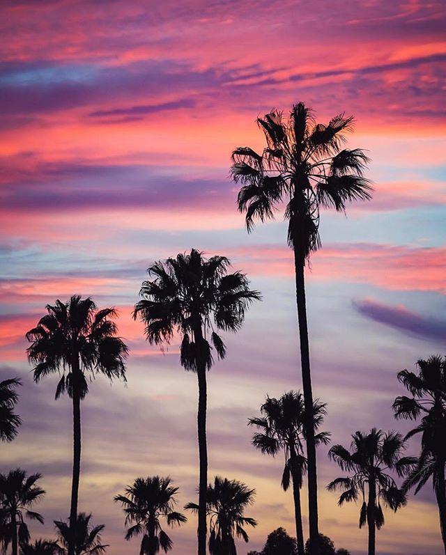 Los Angeles, California by Chris Innes | :: Wanderlust :: in 2019