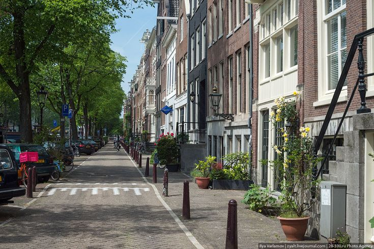 zyalt: Амстердам
