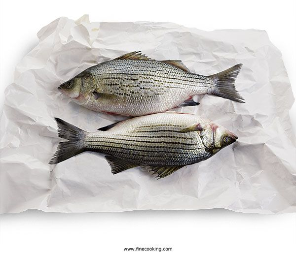 Sustainable Fish List and Recipes