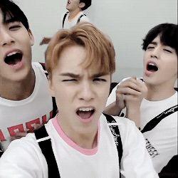 Mingyu, Vernon, S.Coups & Hoshi