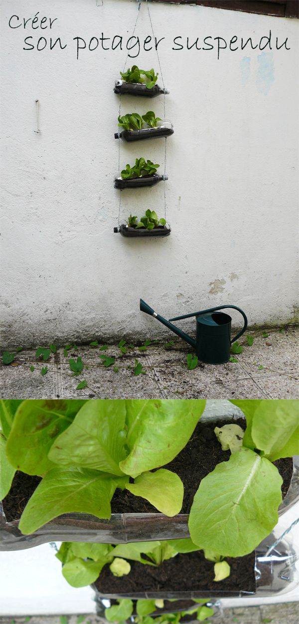 1000 images about potager au balcon on pinterest legumes balconies and pots. Black Bedroom Furniture Sets. Home Design Ideas