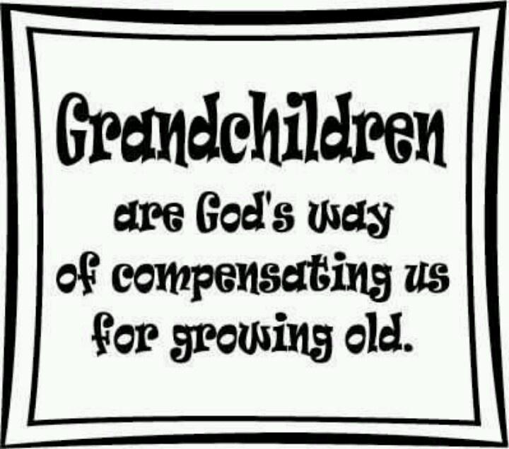 38 best Grandchildren/Grandparents images on Pinterest
