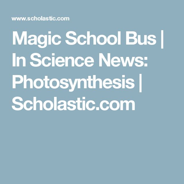 80 best cellular respiration and photosynthesis images on pinterest magic school bus in science news photosynthesis scholastic fandeluxe Gallery