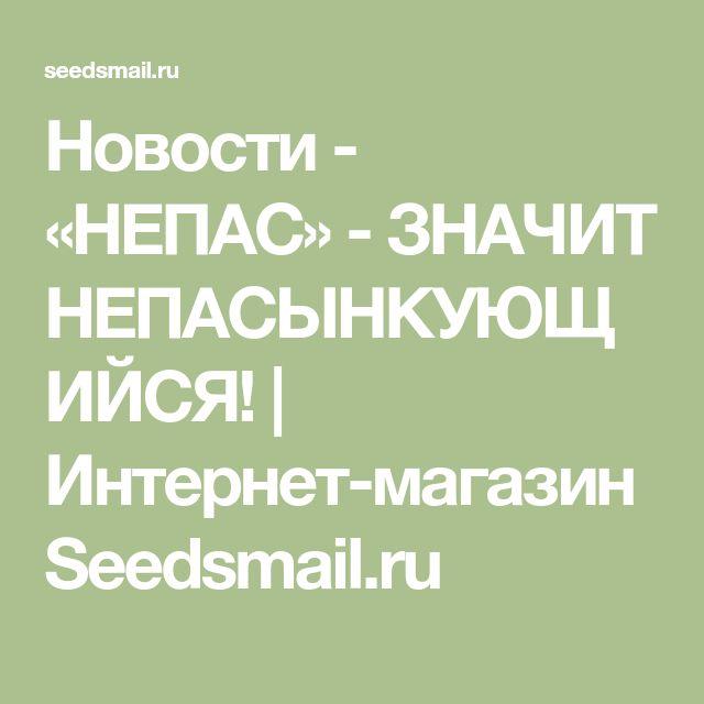 Новости - «НЕПАС» - ЗНАЧИТ НЕПАСЫНКУЮЩИЙСЯ! | Интернет-магазин Seedsmail.ru