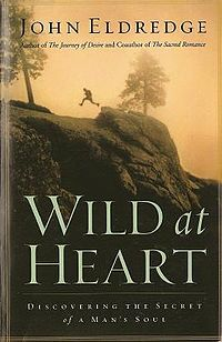 """""""Don't climb on that, don't break anything, don't be so aggressive, don't be so noisy, don't be so messy, don't make such crazy risks. But God's design–which he placed in boys as the picture of himself–is a resounding yes. Be fierce, be wild, be passionate.""""  John Eldredge, Wild at Heart"""