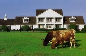 "Southfork Ranch (from TV's ""Dallas"") - Parker, Texas"