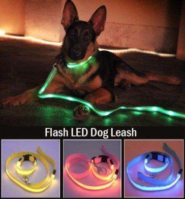 LED Dog Leash from eFizzle