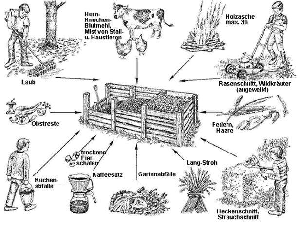 Kompost – lebendige Erde oder 30 Zentimeter, von denen wir leben
