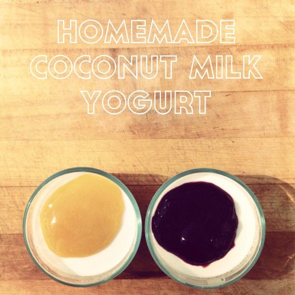 Coconut Milk Yogurt (DAIRY/SUGAR/SOY/GLUTEN FREE, PALEO, VEGAN, AUTOIMMUNE PROTOCOL)
