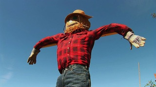 How to Make a Scarecrow video - so fun!