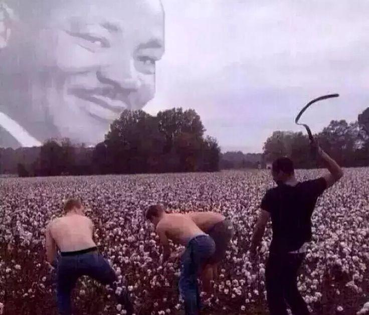 White men picking cotton, black ghetto whip MLK meme