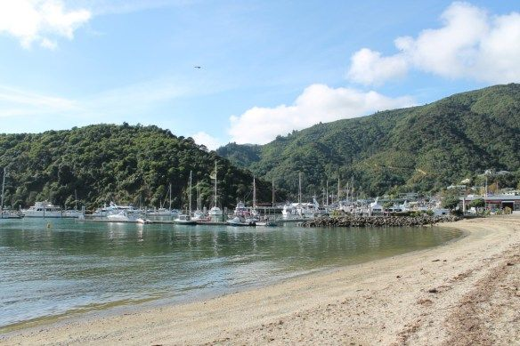Picton with #StrayBus in New Zealand