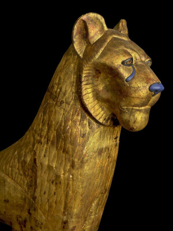 Egypt's Mammal Extinctions Tracked Through 6,000 Years of Art | Science | Smithsonian